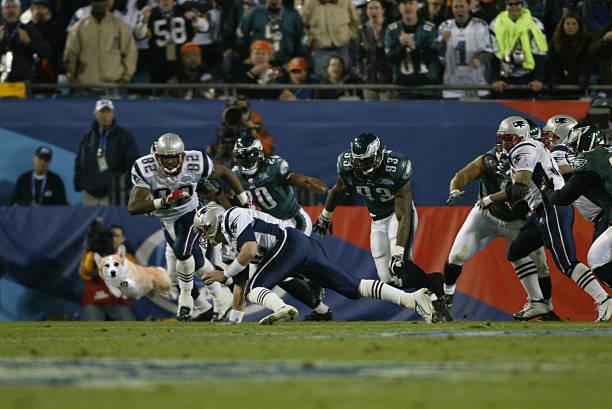 Cool Corgi Super Bowl Run.jpg