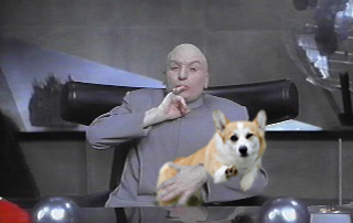Cool Corgi with Dr Evil.jpg