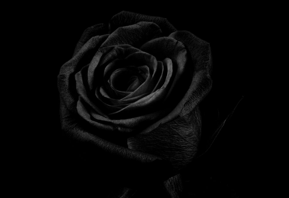 IMG_9760 black.jpg