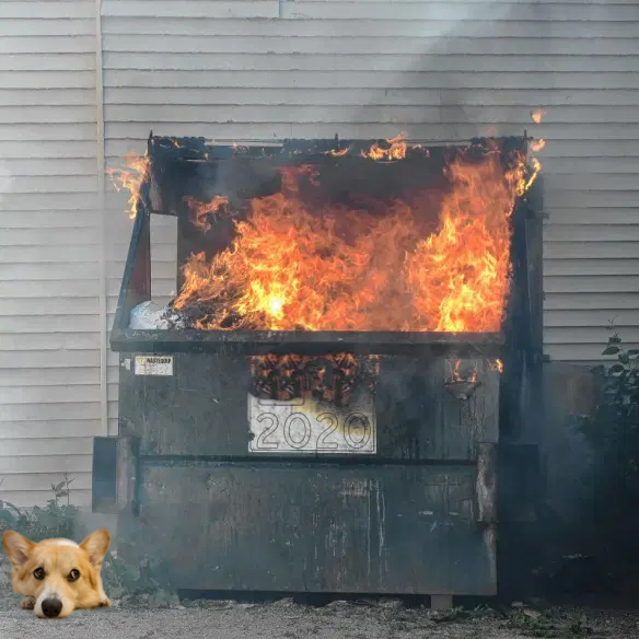 Sad Corgi 2020 Dumpster Fire.jpg
